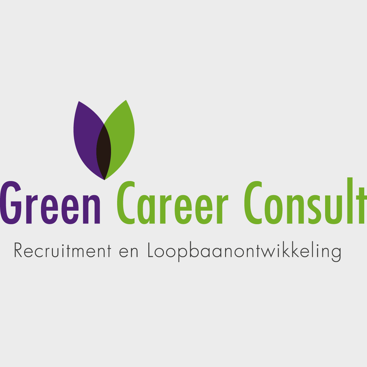 Communicatiebureau Puntkomma Nijmegen - corporate identity Green Career Consult