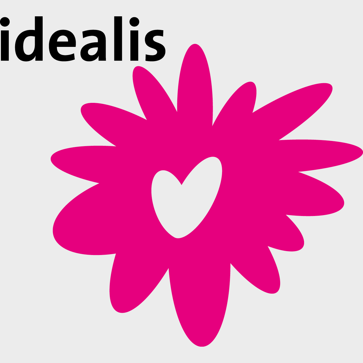 Idealis | Creative Digital Agency Puntkomma Nijmegen