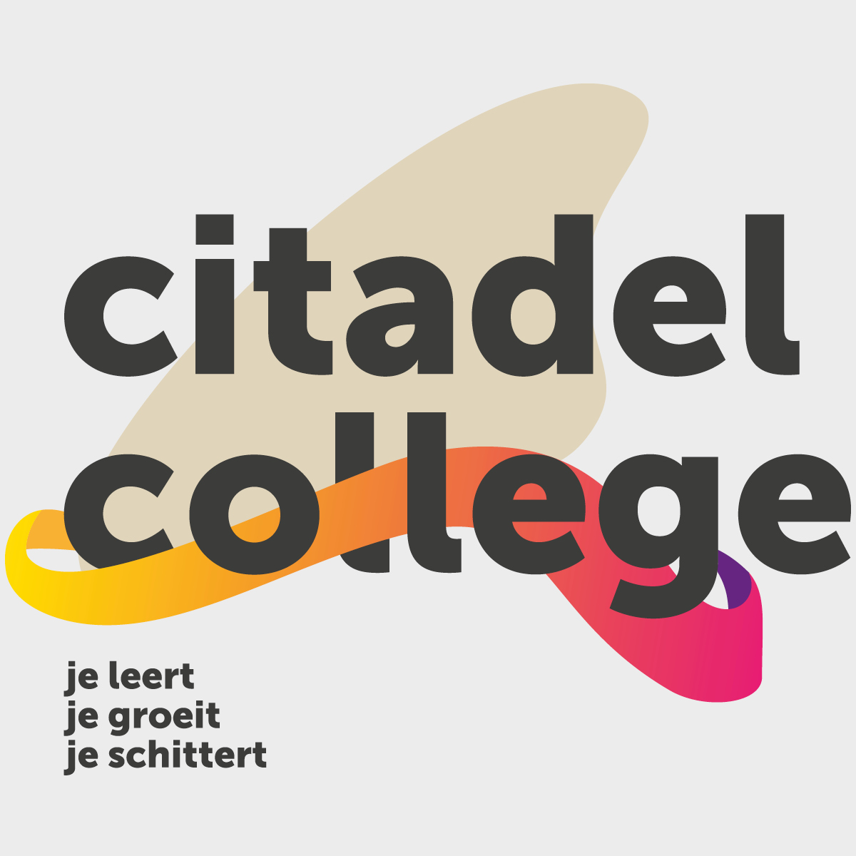 Corporate identity Citadel College - creative digital agency Puntkomma Nijmegen